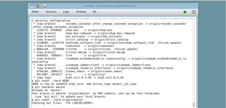 SlapOS Webrunner Terminal   Screenshot ERP5 Repository Update
